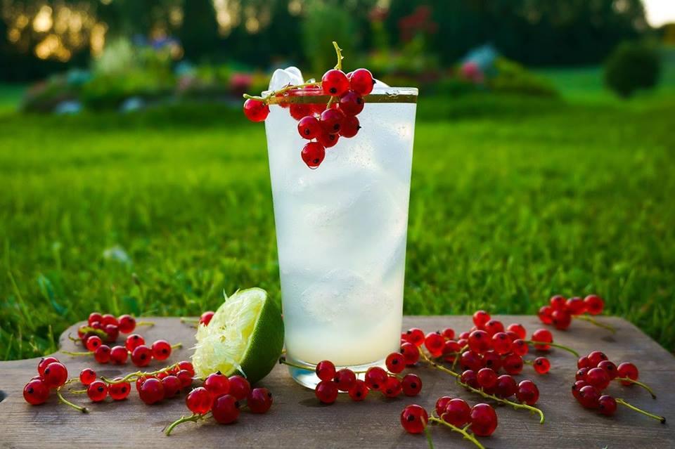 regionale Cocktails selber machen